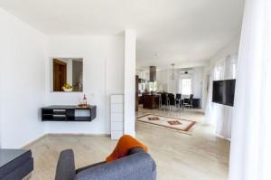 Hans living room 3 small
